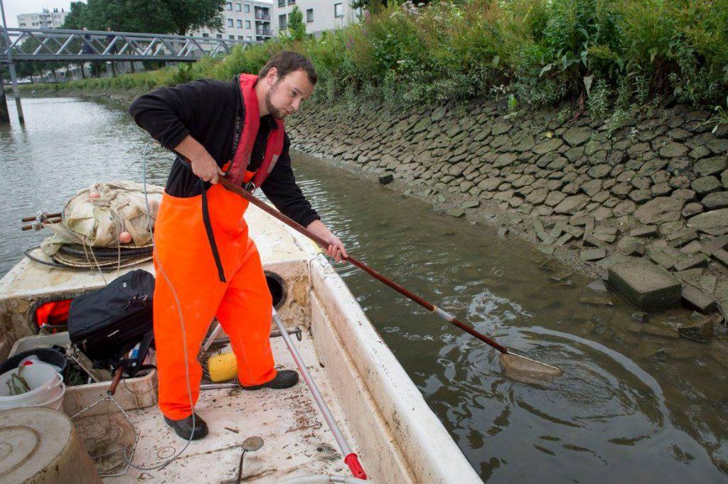 GETIJDENPARK: Ecologie in de Nassauhaven